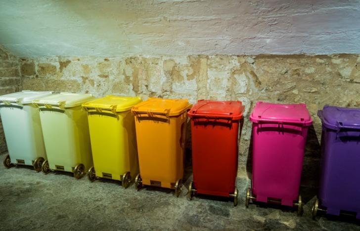 Wenn Zellen die Müllentsorgung verantworten