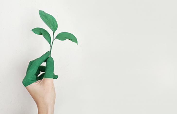 50.000 Euro für nachhaltige Innovation